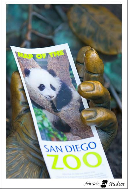 San-Diego-Trip-01