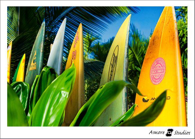 Hawaii-2010-28