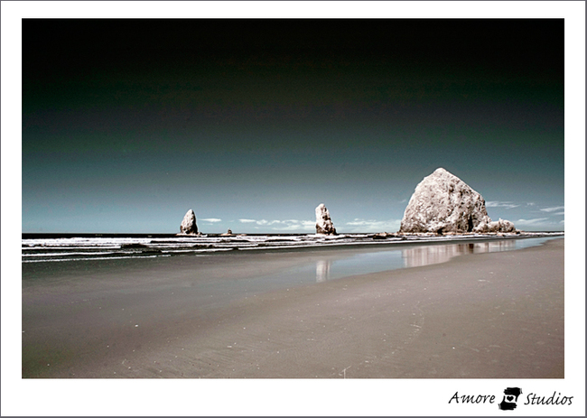 Cannonbeach0908_001_3